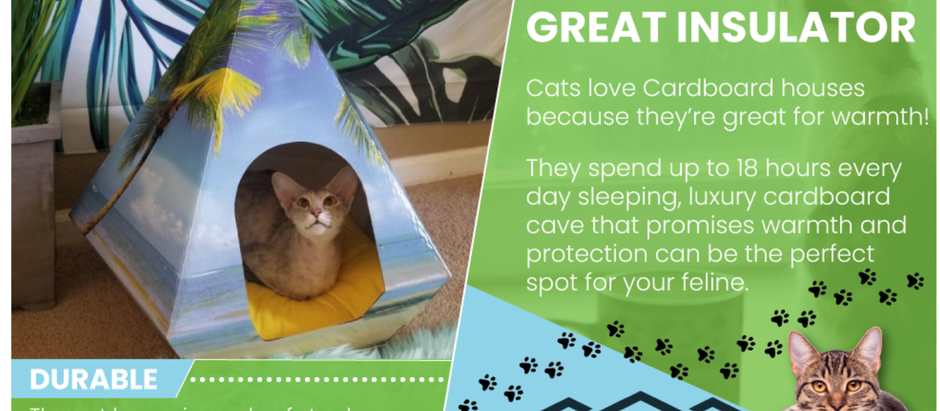 Why cardboard cat house attract your Felines ?