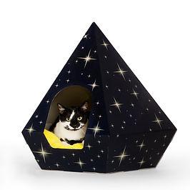 cat tent blue.jpg