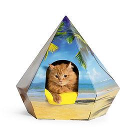 cat house printed palm.jpg