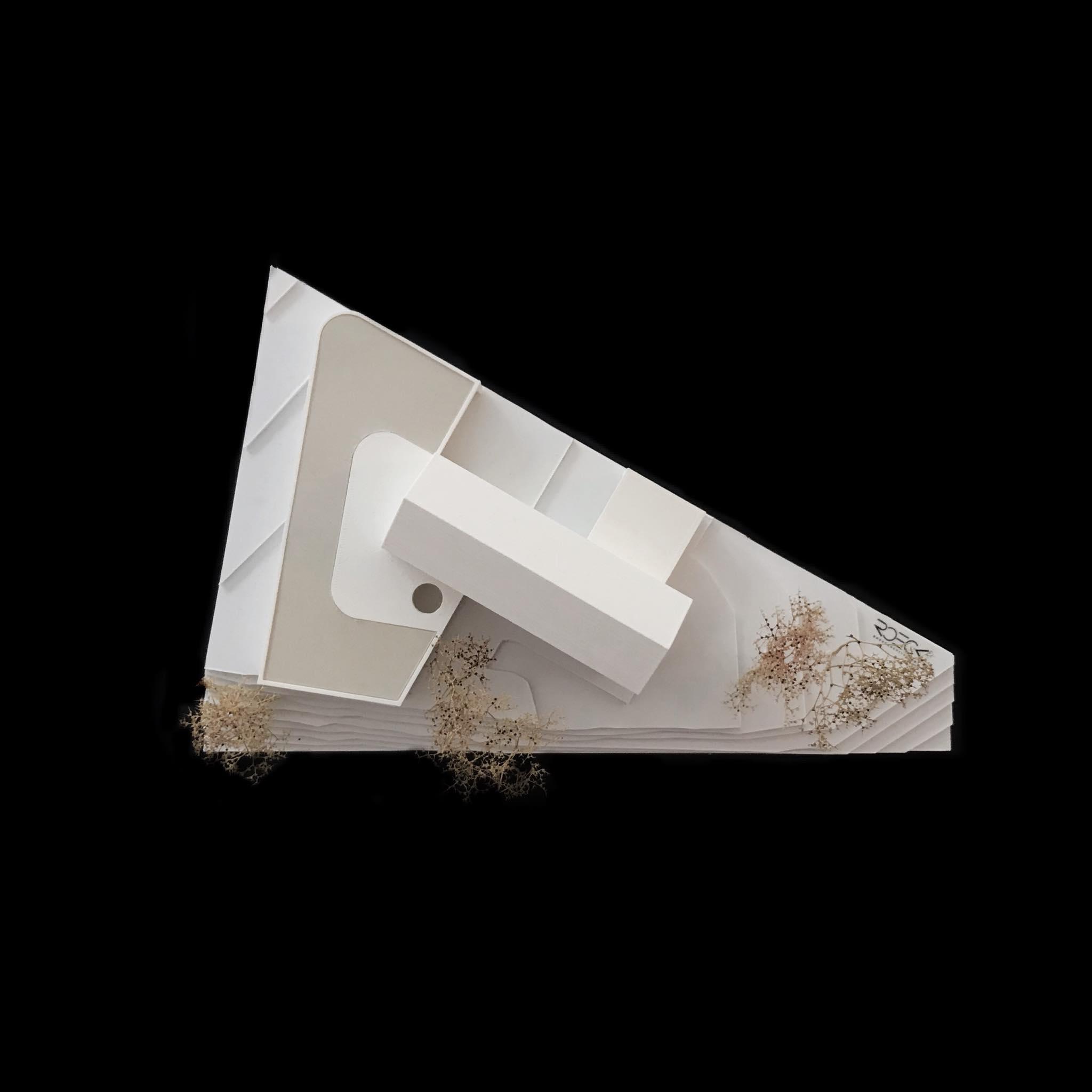 Modell Wohnhaus LEM   ROECK Architekten