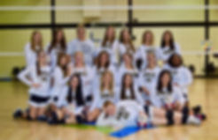 2019 VB FULL TEAMS.jpg