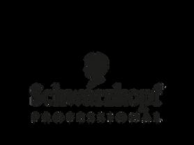 schwarzkopf-professional-logo-markets.pn