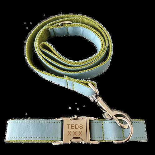 TEDS collar/leash set