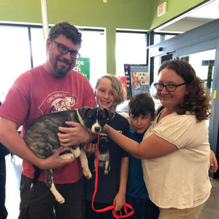 Laverne was adopted 6-29-19
