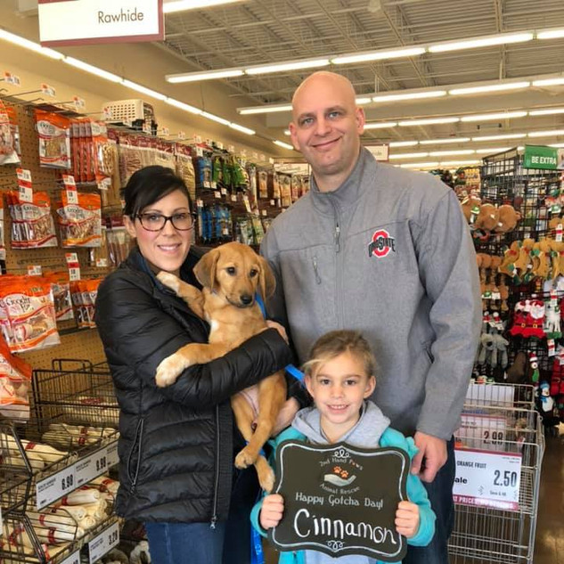 Cinnamon was adopted 11-16-19
