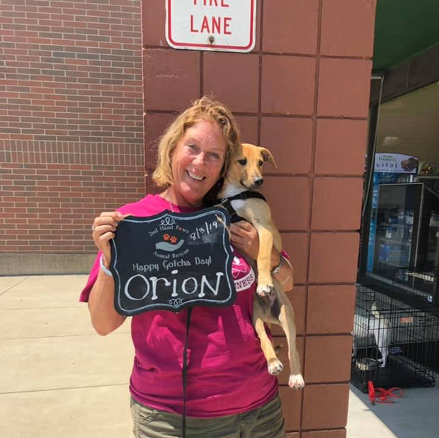 Orion was adopted 8-3-19