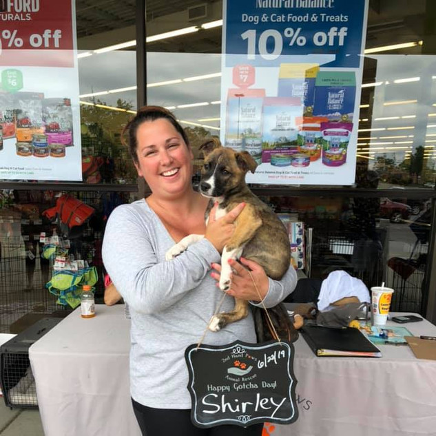Shirley was adopted 6-22-19