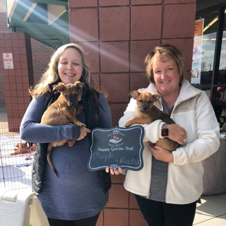 Mocha and Maple were adopted 11-2-19