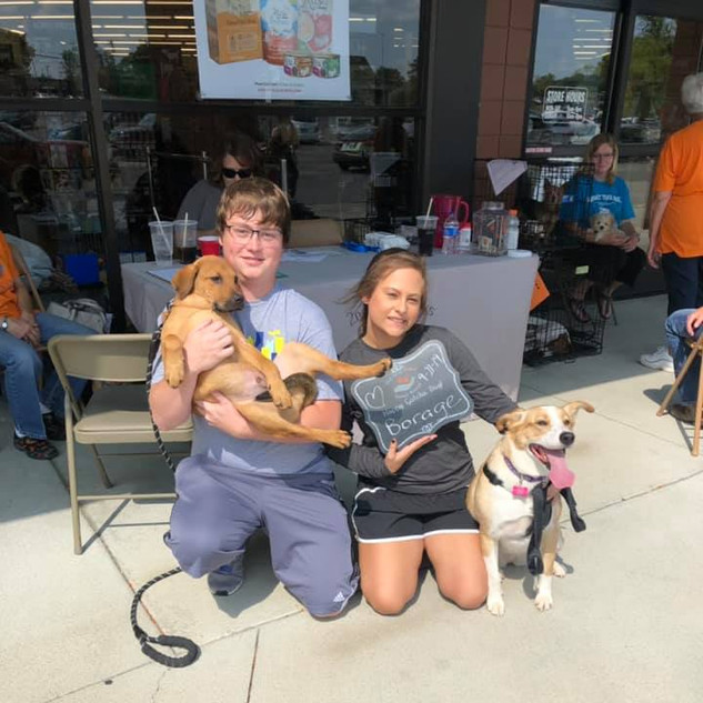 Borage was adopted 9-21-19