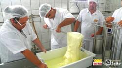 Curso de queijo em janeiro de 2015