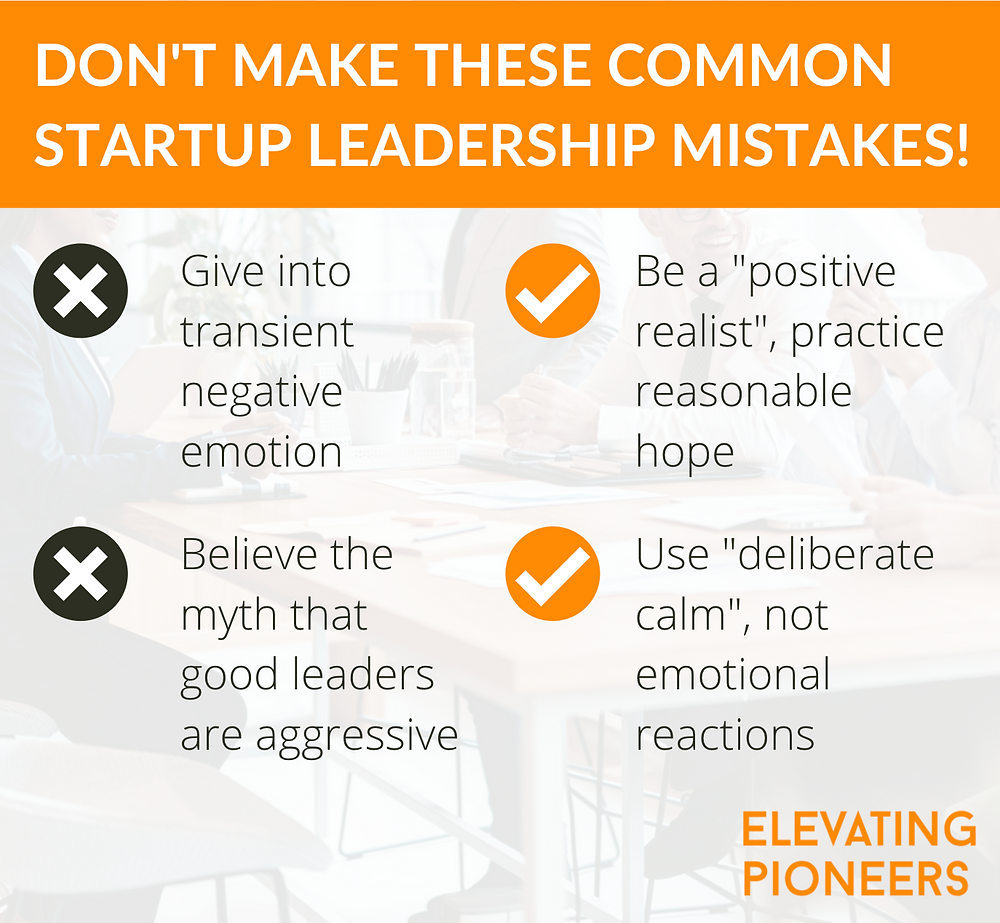 Leadership Mistakes, Executive Coaching and Consulting for Startups