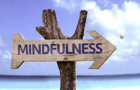 Mindfulness, una práctica que nos ayuda ampliar nuestra percepción