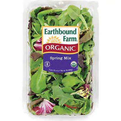 Spring Mix Salad Organic (454 g)