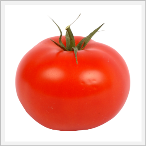 Tomatoes (piece)