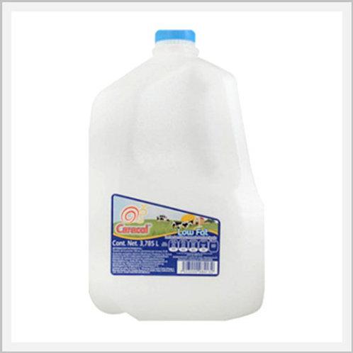 Low Fat/Light Milk (1 gal)