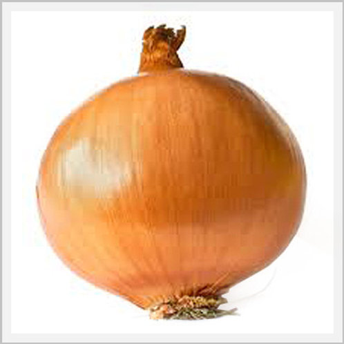 Yellow Onion (piece)