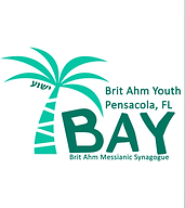 Brit Ahm Youth BAY.png