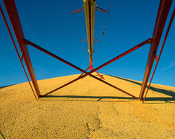 Red Frame, Yellow Grain