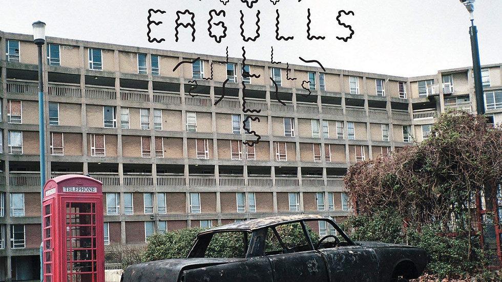 Eagulls – Eagulls