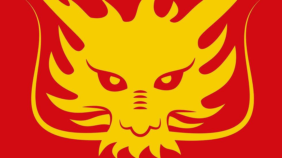 Molodoï – Dragon Libre