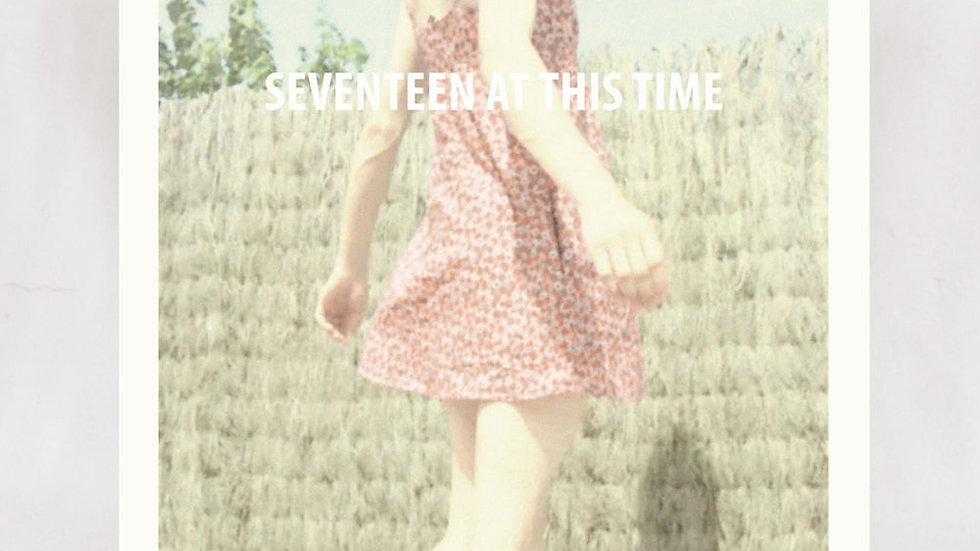 Seventeen At This Time – Everything I touch goes wrong
