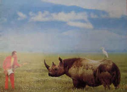 Adrian Belew – Lone Rhino