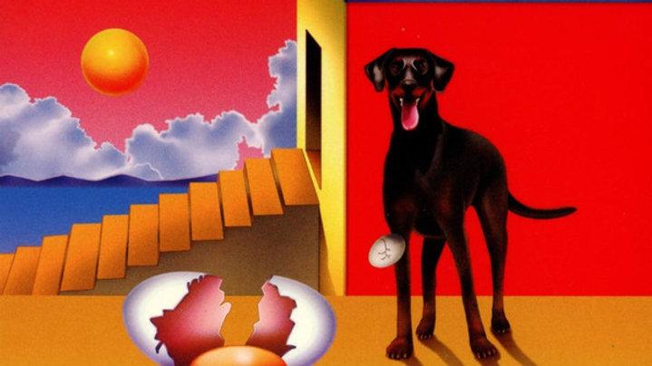 Agar Agar // The Dog And The Futur