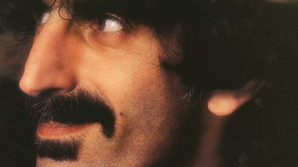 Frank Zappa ‎– You Are What You Is