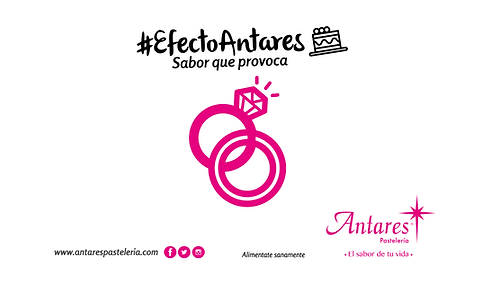 ANTARES13-02.png