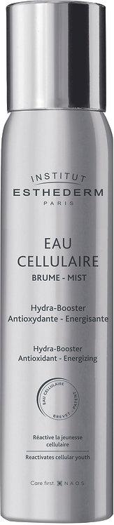 Institut Esthederm Cellular Water Antioxidant Face Mist