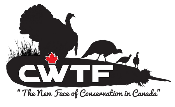 CWTF clear background.png