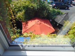 Garden from Room 2