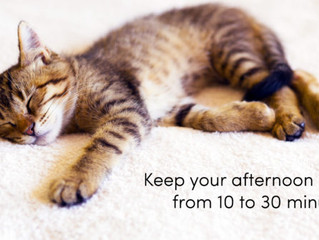 Do you take afternoon naps ?