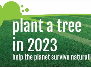 plant a tree is 2023