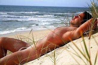 beach 4445png.png