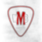 PLECTRUM TRANSPARENT.png