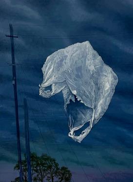 Plastic Bag #1, 2016