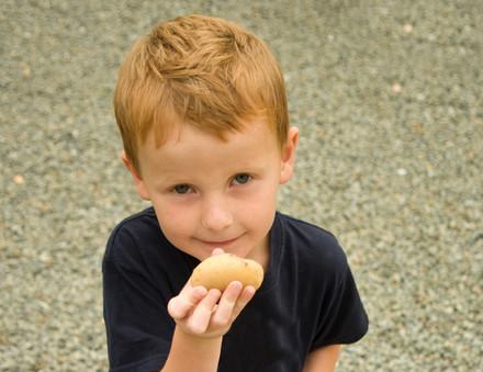 mhhh lecker Kartoffeln