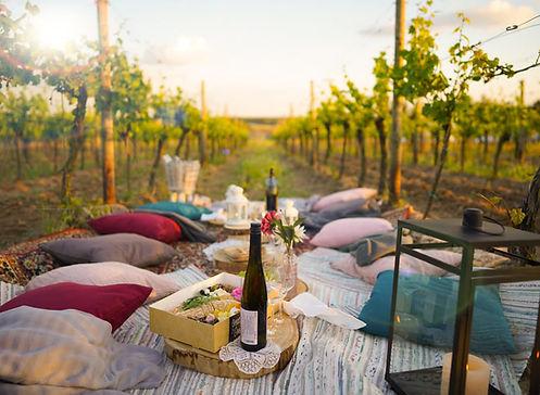 Pop-Up Picknick im Weinberg für Tiny Weddings, Geburtstage oder JGAs