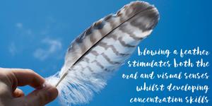 feather - a yoga breath activity
