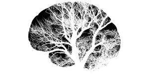 Growth mindset blog header