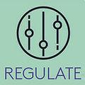 regulation & wellbeing in children
