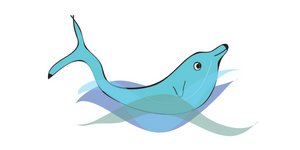 Dolphin pose blog header
