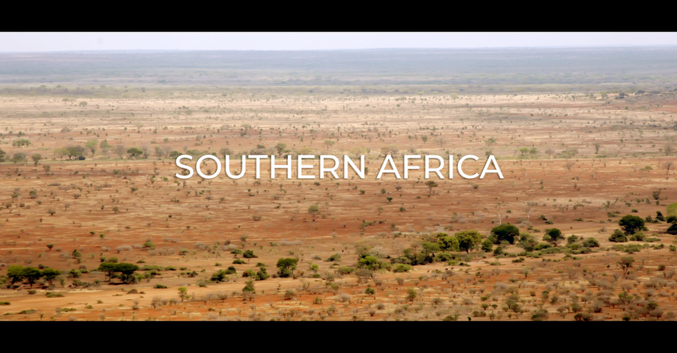 SOUTHERN_AFRICA_WEB.mp4