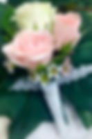 IMG-5285.jpg