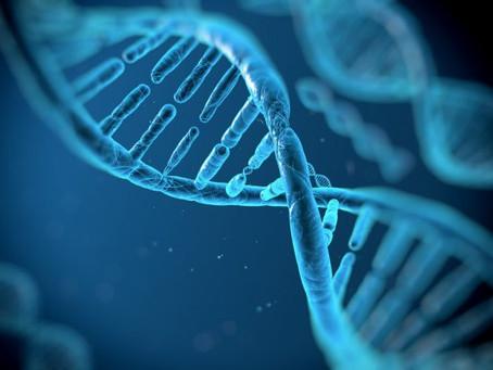 Suas emoções interferem no seu DNA