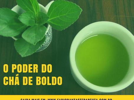 Conheça o poder do chá de boldo