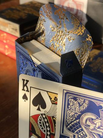 blue flap open sun 2.jpg
