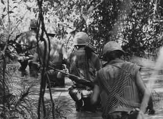 Parasites From Vietnam May Be Killing VETS