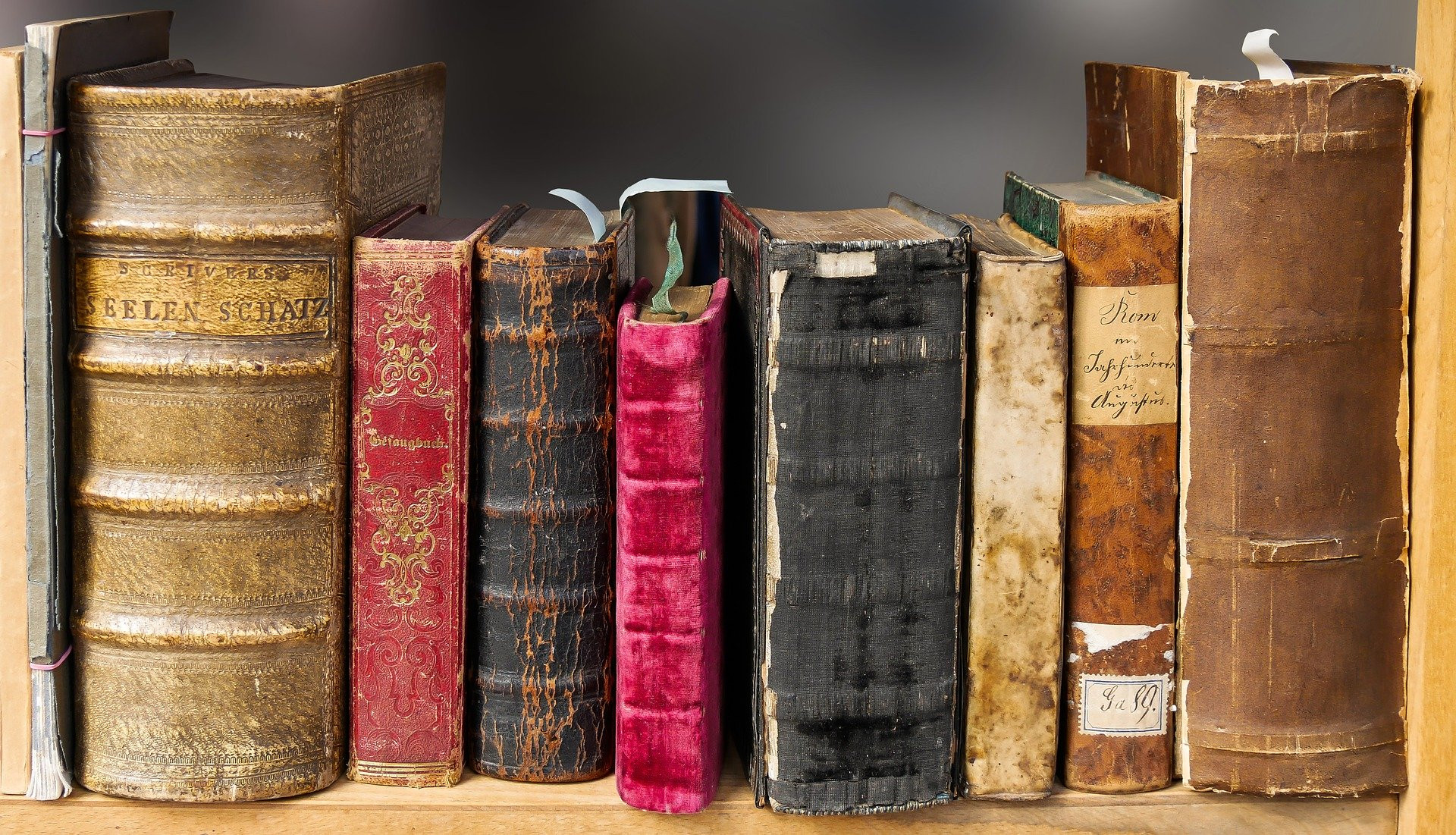 Human Rights Book Club (HS) - Fall 2021